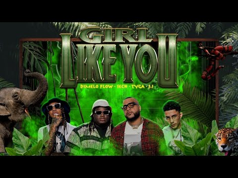 Dimelo Flow, Sech, Tyga, J.I - Girl Like You