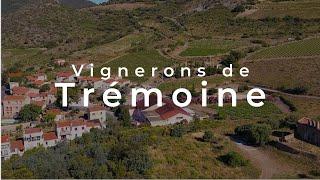 Vignerons de Trémoine, salon des vins et de la gastronomie, My Tydeo
