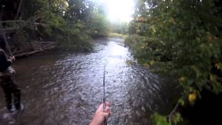 Michigan River salmon fishing
