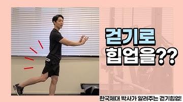 걷기운동으로 힙업을?? 한국체대박사가 알려주는 바르게 걷는법(힙업편)