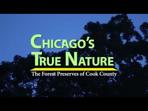 Coming May 2016 - Chicago's True Nature: The Forest Preserves of Cook County