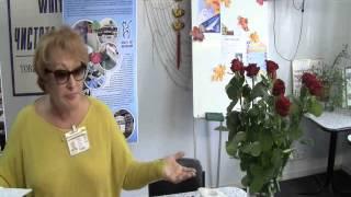 Лариса Ивановна Орлова «Обучение – залог успеха в бизнесе