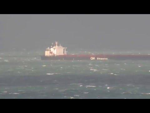 C.oasis - bulk carrier