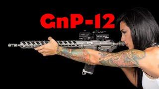 """Guns-n-Politics """"GnP"""" (Get Some!) Podcast 12 1/07/2016"""