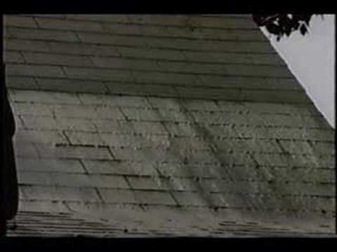 Removing Algae Stains From Roof Shingles  YouTube