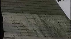 Removing Algae Stains From Roof Shingles
