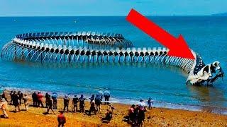 8 Мифических Существ Которых Видели в Реальности