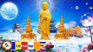 Mỗi Tối Nghe Tụng Kinh A Di Đà Phật (Kinh Cầu An) Cứu Khổ Độ Sanh Tây Phương Cực Lạc An Vui Vô Cùng