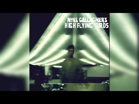 Noel Gallagher- (Stranded on) The wrong beach