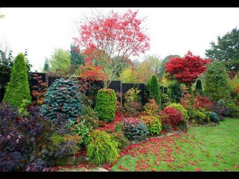 Парадный Вход Осенью 🍁🍂 Опять намечается Ремонт 😰