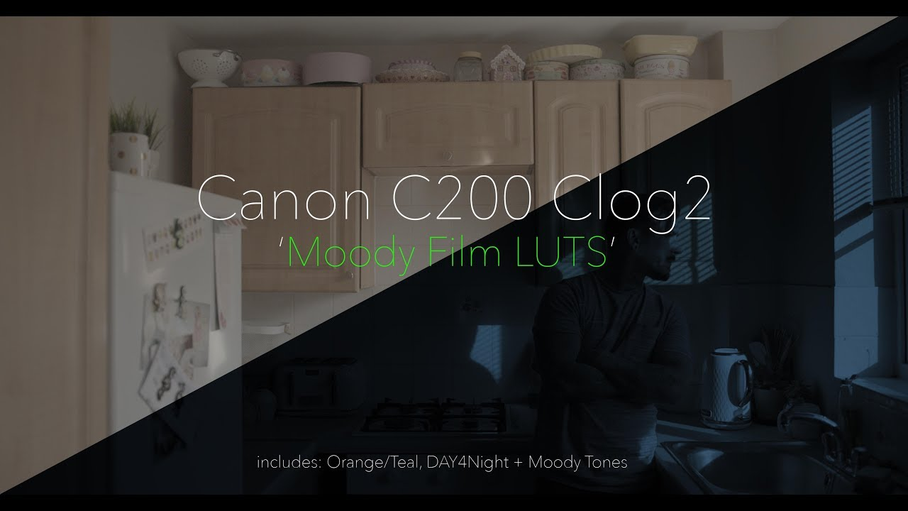Canon C200 C-Log2 // Moody Film LUTS