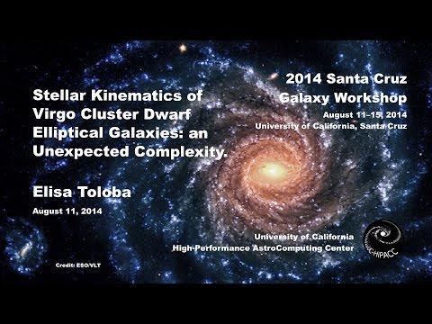 Stellar Kinematics of Virgo Cluster Dwarf Elliptical Galaxies - Elisa Toloba