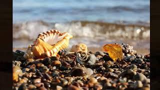 Красивые стихи про море - Я вышла к морю