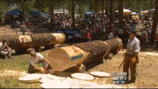 Lumberjacks Let The Axes Fly In North Fork