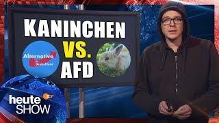Nico Semsrott vergleicht sein Kaninchen mit der AfD | heute-show vom 08.12.2017