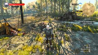 The Witcher 3: Wild Hunt Walkthrough - Side Quest: Thou Shalt Not Pass