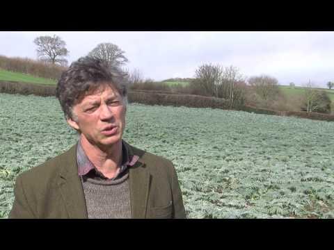 Riverford Organic Farmers #PoweredByEcotricity