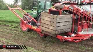 Sator XXL - Kombajn do marchwi do skrzyniopalet / Carrot Harvester for Boxes