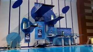 FINA World Series 2012, Dubai