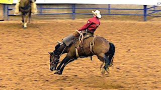 Ranch Broncs  - 2019 (32nd) Coors Cowboy Club Ranch Rodeo (Saturday) (CENSORED)