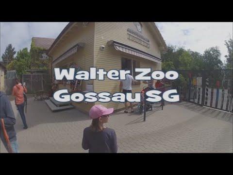 Walter Zoo Gossau SG