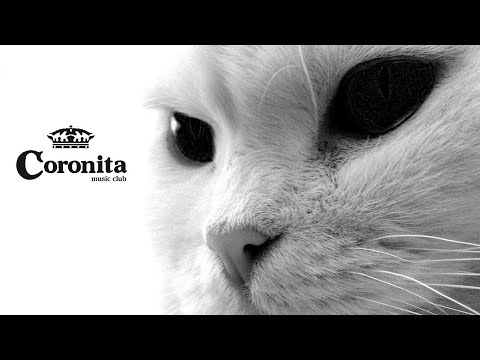 Coronita Minimal Tech House Mix 2017™ (Toxic Cat)