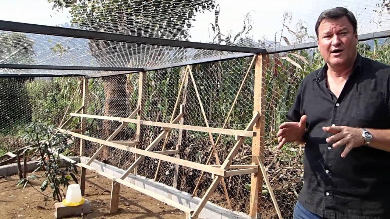 Final video tour building organic free range chicken farm for How to find a good builder in your area