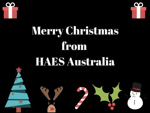 The Twelve HAES of Christmas karaoke version
