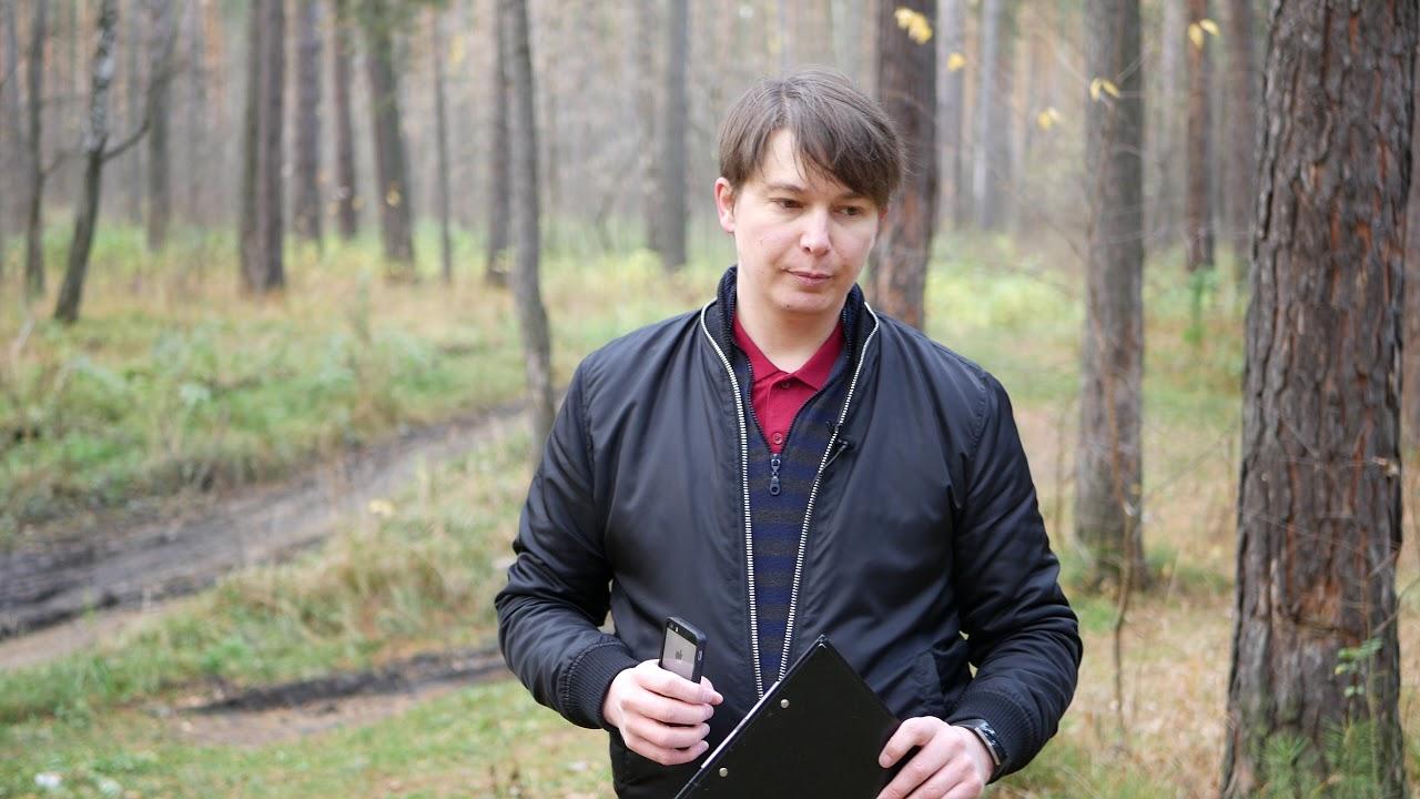 ОВЕН 1 событие 1, 4,6,13 ноября Гороскоп