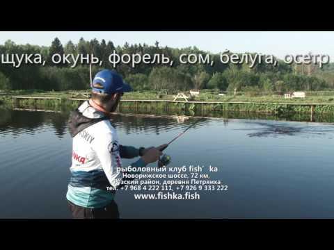 безлимитная рыбалка на форель