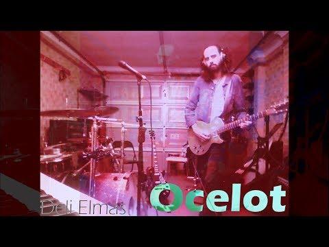 Ocelot - Lin Pesto Araba Cover Cover