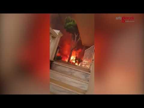 Yunanistan'daki yangının gerçek yüzü