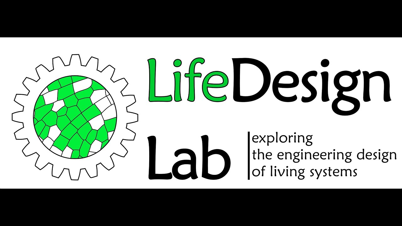 Exploring the Engineering Design of Living Systems | LifeDesign Lab | Hamed Rajabi