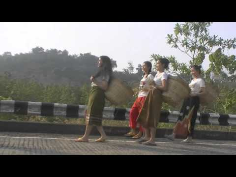 """MV เพลง """"ภูมิแพ้กรุงเทพ"""" cover (รร.พะตงวิทยามูลนิธิ)"""
