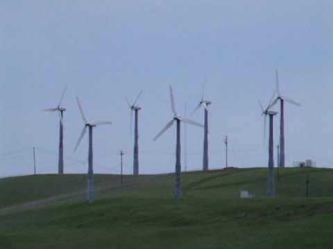 Cluster of Windmills, Altamont Pass, California