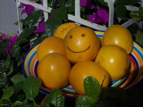 The Citrus Song