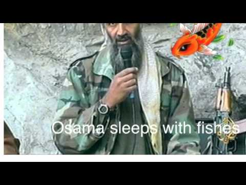 Osama Sleeps With Fishes