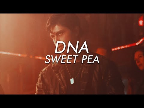 Sweet Pea || DNA