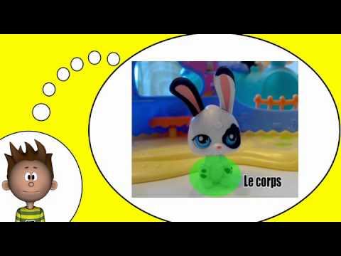 Ik leer Frans = De huisdieren # Het konijn