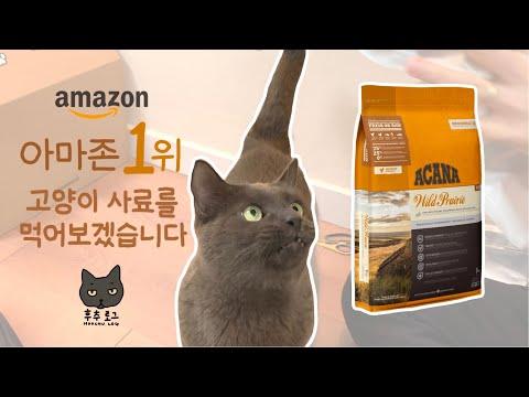 고양이 사료 추천 | 아마존 1위 사료 | 아카나 | 고양이 사료리뷰 | 후추로그