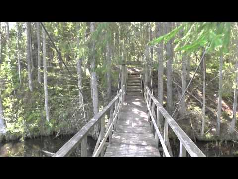 Lake Rae Hiking Trail  Estonia