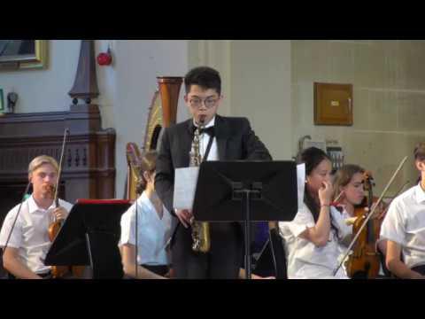 Concerto No1 - Philip Glass
