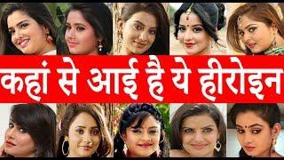 भोजपुरी के सभी हीरोइन के बारे में सब कुछ जानिए Amrapali Dubey - Kajal Raghwani - Akshara Singh