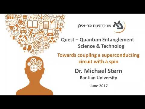Towards Coupling a Superconducting Circuit with a Spin - Dr. M. Stern