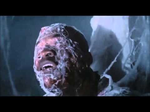 The Mist .... Huge Spiders Attack Men In Pharmacy ( Scene )Kaynak: YouTube · Süre: 2 dakika39 saniye
