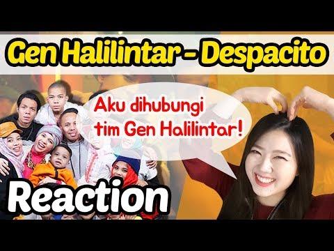 Aku Dihubungi Tim Gen Halilintar! Kesenengan Jadi Bikin Reaction Despacito Cover