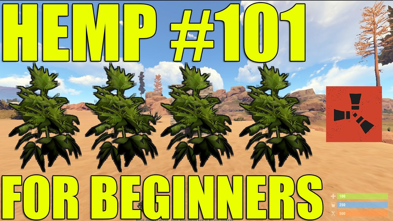 HOW TO MAKE A HEMP FARM FOR CLOTH IN RUST