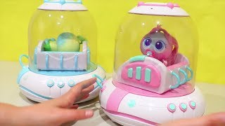 Giant Toy Baby Incubator ! Toys and Dolls Fun for Kids Playing with Toy Babies and Toddlers | SWTAD