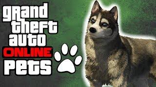 GTA Online pets!