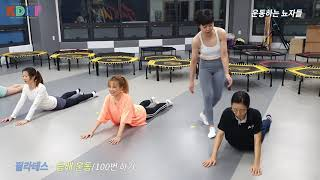 [필라테스]-등배운동/복근운동/팔뚝살빼기/상체 다이어트…